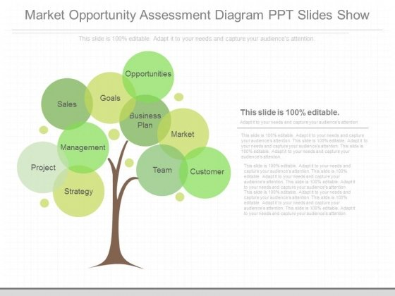 Market Opportunity Assessment Diagram Ppt Slides Show