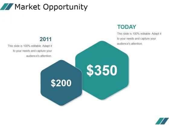 Market Opportunity Ppt Point Presentation Infographic Template Slide 1 2