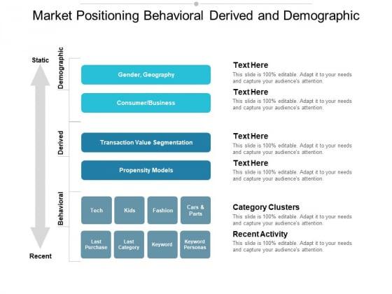 Market Positioning Behavioral Derived And Demographic Ppt PowerPoint Presentation Ideas Gridlines