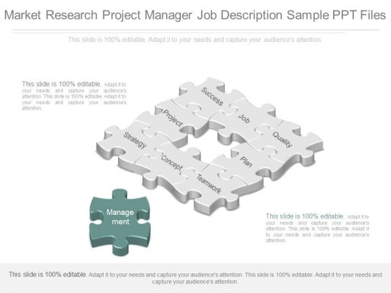 Market Research Project Manager Job Description Sample Ppt Files