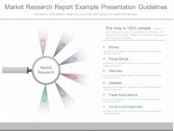 Market Research Report Example Presentation Guidelines