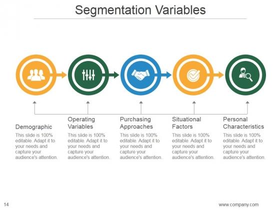 Market_Segmentation_Strategy_Solutions_PowerPoint_Presentation_Complete_Deck_With_Slides_Slide_14