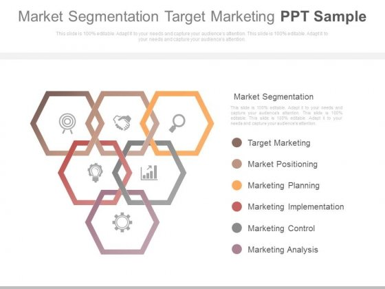 Market Segmentation Target Marketing Ppt Sample