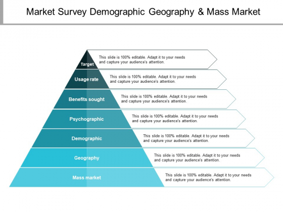 Market Survey Demographic Geography And Mass Market Ppt PowerPoint Presentation Gallery Slide