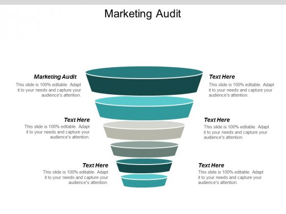 Marketing Audit Ppt PowerPoint Presentation Show Templates Cpb