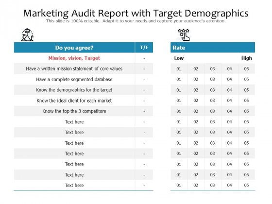 Marketing Audit Report With Target Demographics Ppt PowerPoint Presentation File Layouts PDF
