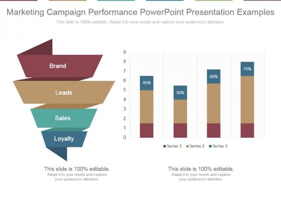 Marketing Campaign Performance Powerpoint Presentation Examples