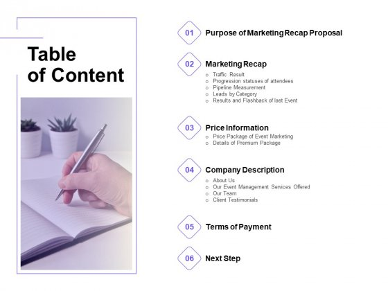 Marketing Campaign Table Of Content Elements PDF
