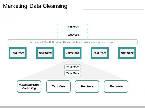 Marketing Data Cleansing Ppt PowerPoint Presentation Show Visual Aids Cpb