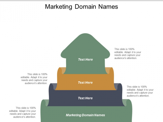 Marketing Domain Names Ppt PowerPoint Presentation Inspiration Templates Cpb