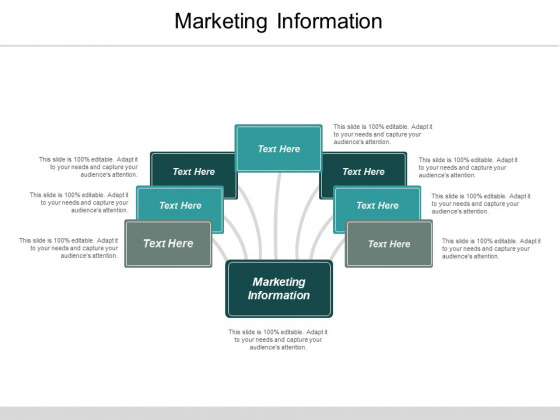 Marketing Information Ppt PowerPoint Presentation Model Outline Cpb