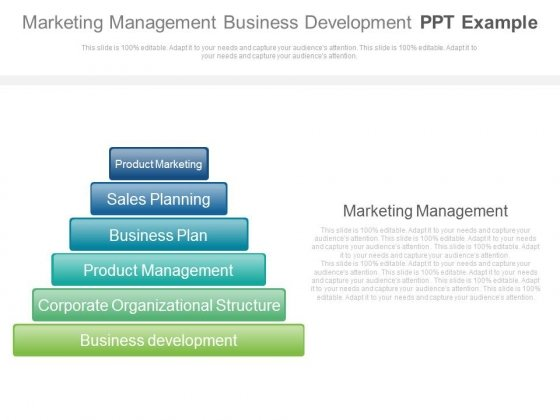 Marketing Management Business Development Ppt Example