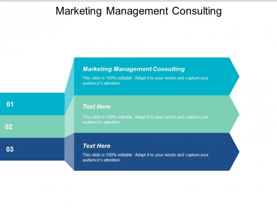 Marketing Management Consulting Ppt PowerPoint Presentation Pictures