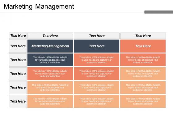 Marketing Management Ppt Powerpoint Presentation Portfolio Design Ideas Cpb