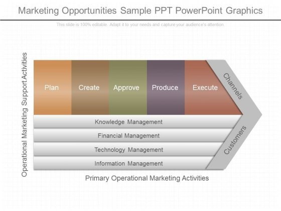 Marketing Opportunities Sample Ppt Powerpoint Graphics