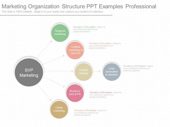 marketing organization structure ppt examples professional