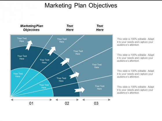 Marketing Plan Objectives Ppt Powerpoint Presentation Outline Example Cpb