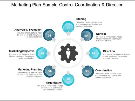 Marketing Plan Sample Control Coordination And Direction Ppt PowerPoint Presentation Outline Themes