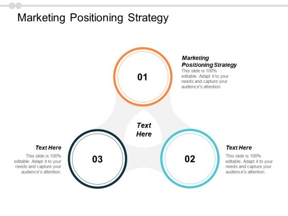 Marketing Positioning Strategy Ppt PowerPoint Presentation Inspiration Show Cpb