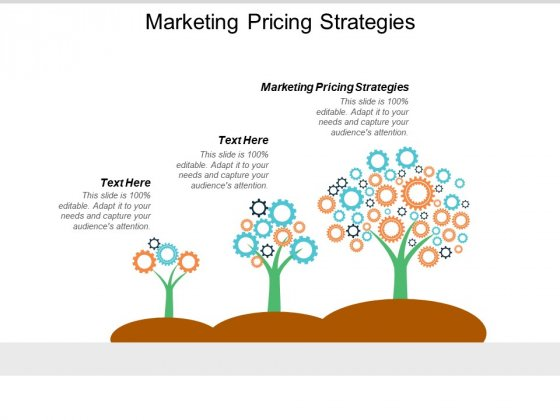 Marketing Pricing Strategies Ppt PowerPoint Presentation Styles Example  Cpb