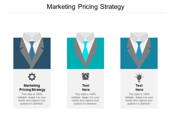 Marketing Pricing Strategy Ppt PowerPoint Presentation File Gallery Cpb