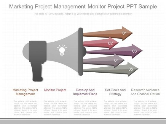 Marketing Project Management Monitor Project Ppt Sample