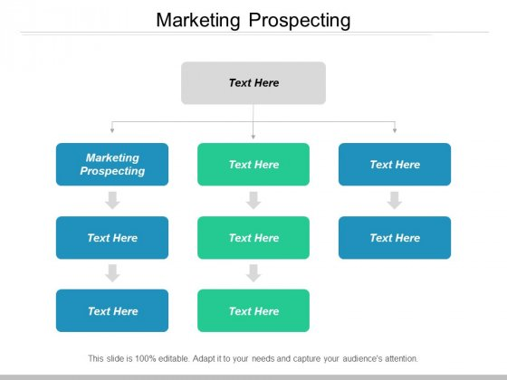 Marketing Prospecting Ppt Powerpoint Presentation Summary Good Cpb