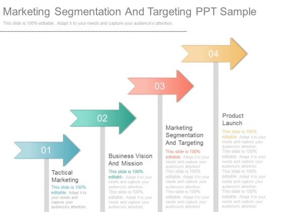 Marketing Segmentation And Targeting Ppt Sample