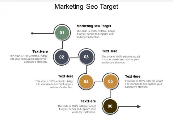 Marketing Seo Target Ppt PowerPoint Presentation Professional Skills Cpb