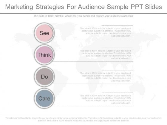 Marketing Strategies For Audience Sample Ppt Slides
