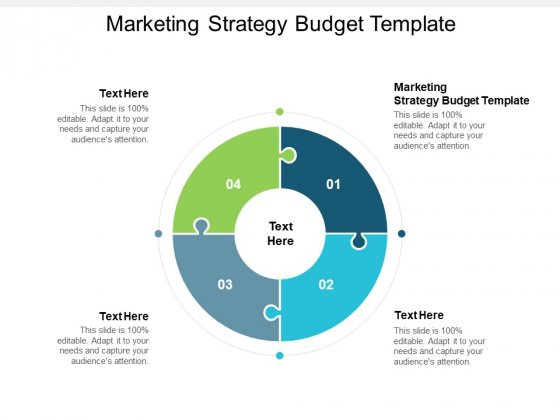Marketing Strategy Budget Template Ppt PowerPoint Presentation Ideas Example Cpb