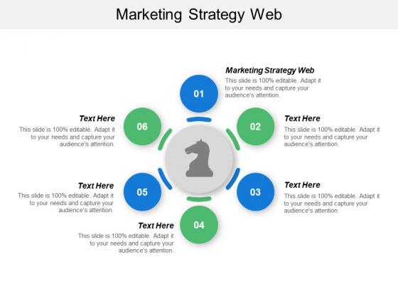 Marketing Strategy Web Ppt PowerPoint Presentation Inspiration Professional Cpb