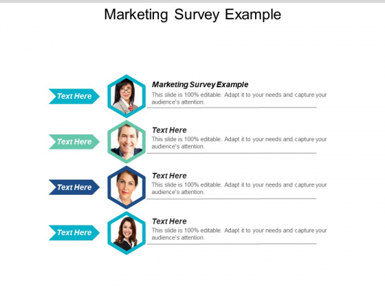 Marketing Survey Example Ppt PowerPoint Presentation Gallery Format Cpb