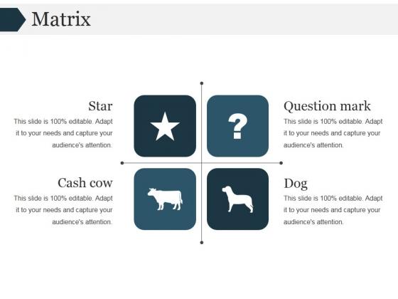 Matrix Ppt PowerPoint Presentation Ideas Graphics