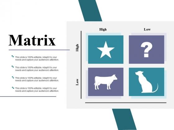 Matrix Ppt PowerPoint Presentation Ideas Portrait