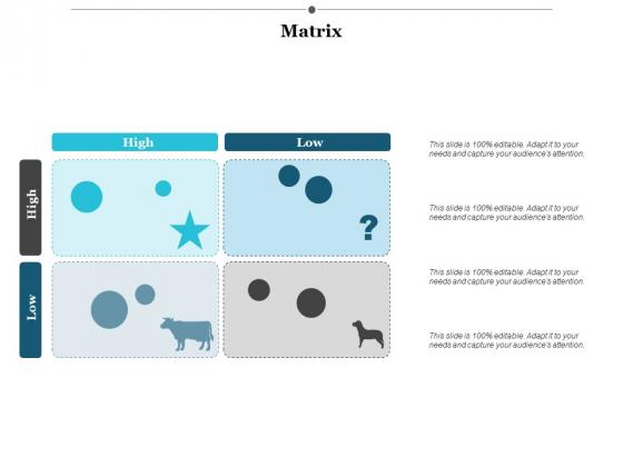 Matrix Ppt PowerPoint Presentation Infographic Template Visuals