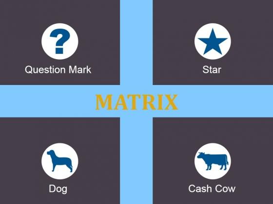Matrix Ppt PowerPoint Presentation Inspiration Outline