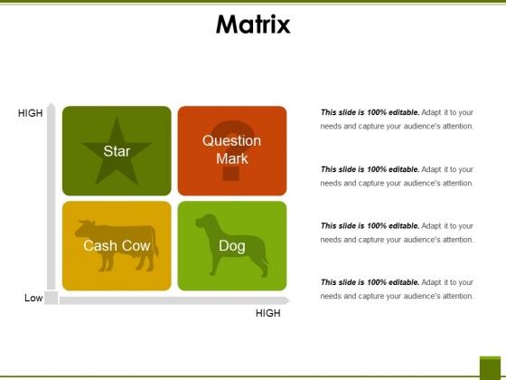 Matrix Ppt PowerPoint Presentation Show Summary