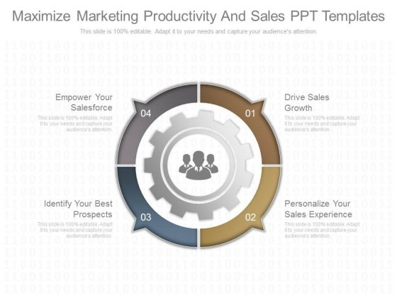 Maximize Marketing Productivity And Sales Ppt Templates