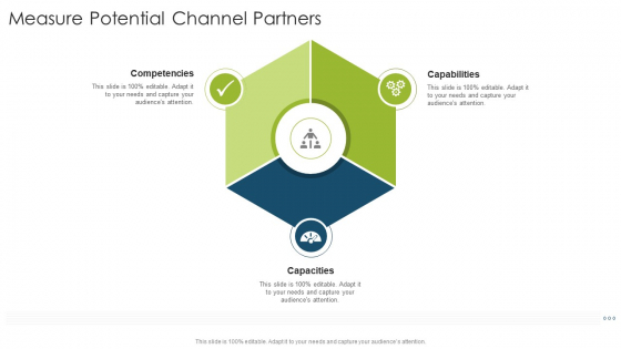 Measure Potential Channel Partners Capacities Organizational Strategies And Promotion Techniques Infographics PDF