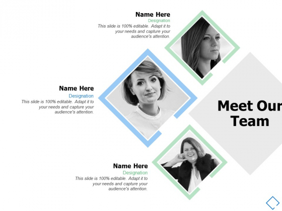 Meet Our Team Communcation Ppt PowerPoint Presentation Show Example File