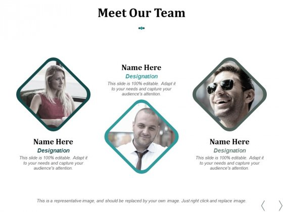 Meet Our Team Ppt PowerPoint Presentation Infographic Template