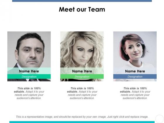 Meet Our Team Ppt PowerPoint Presentation Show Design Ideas