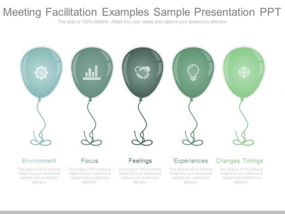 Meeting Facilitation Examples Sample Presentation Ppt