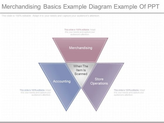 Merchandising Basics Example Diagram Example Of Ppt