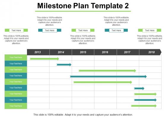 Milestone Plan Management Ppt PowerPoint Presentation Professional Sample