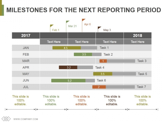 Milestones For The Next Reporting Period Ppt PowerPoint Presentation Infographics Display