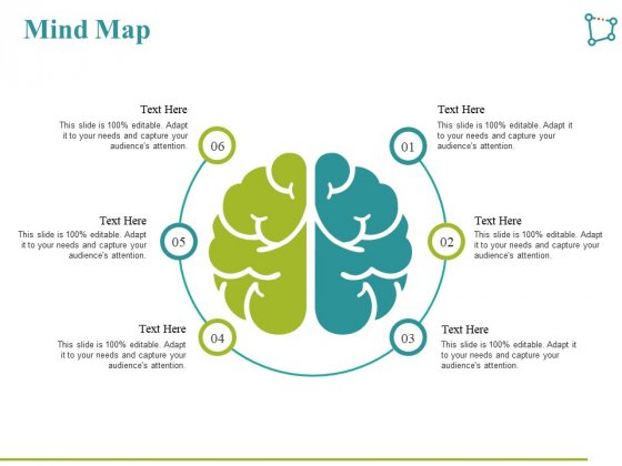 Mind Map Ppt PowerPoint Presentation Infographics Examples