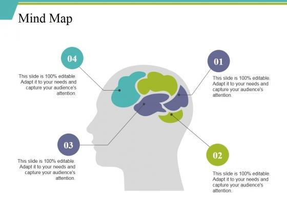 Mind Map Ppt PowerPoint Presentation Portfolio Display