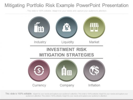 Mitigating Portfolio Risk Example Powerpoint Presentation